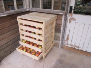 Apple Rack from Ledbury Lifestyle